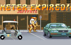 Blanka – Street Fighting Meter Maid