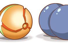 Non-Regulation Poké Balls (2 of 6)