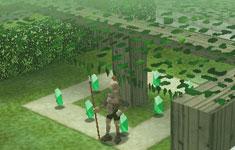 Valuing Zelda's House: Hyrule Castle