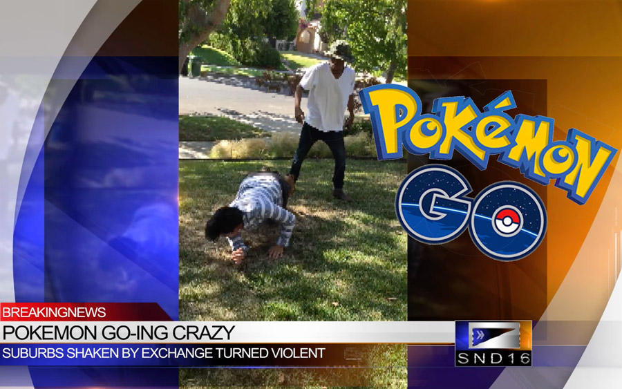 Pokémon GO Fight Caught on Camera!