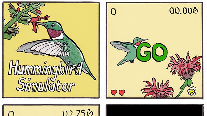 Hummingbird Simulator