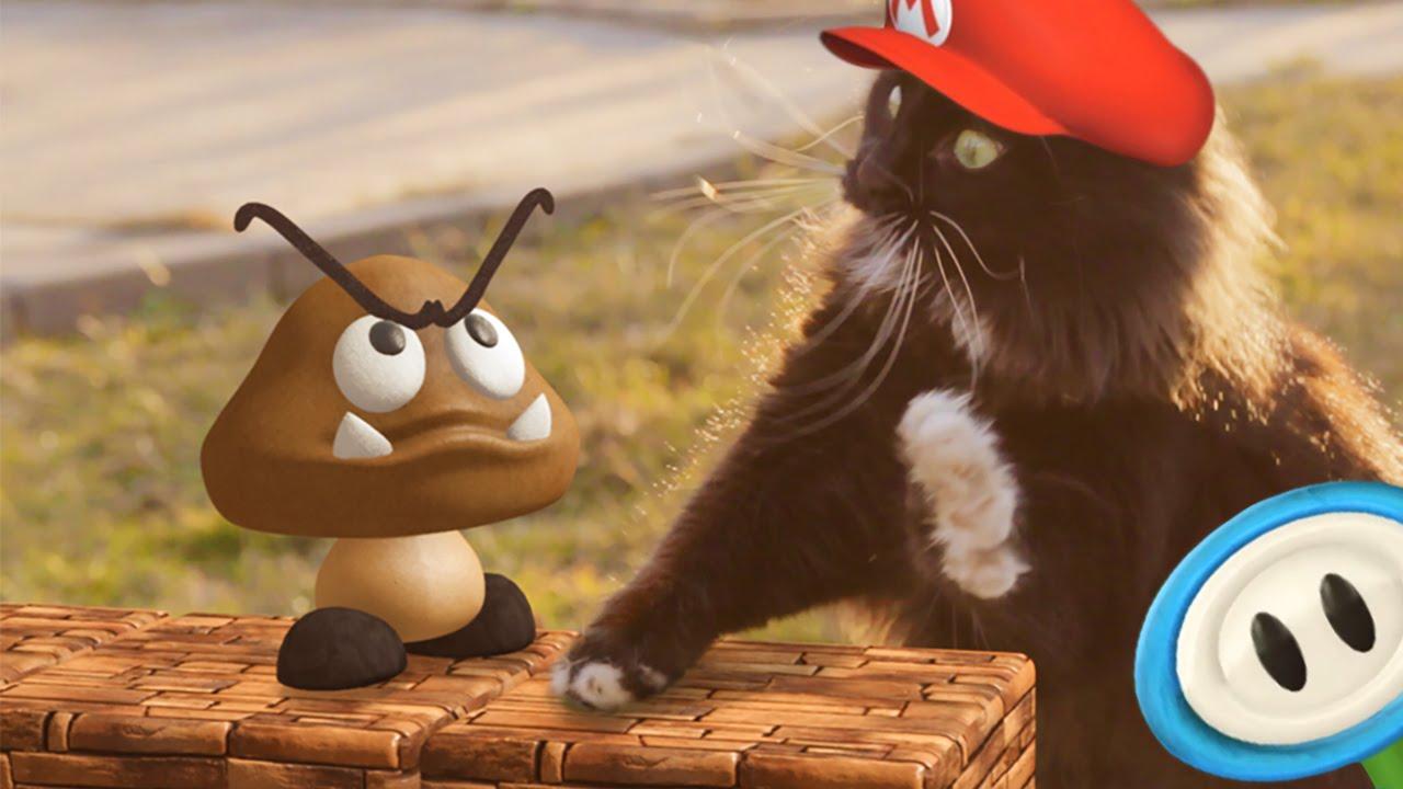 Super Mario's Cat